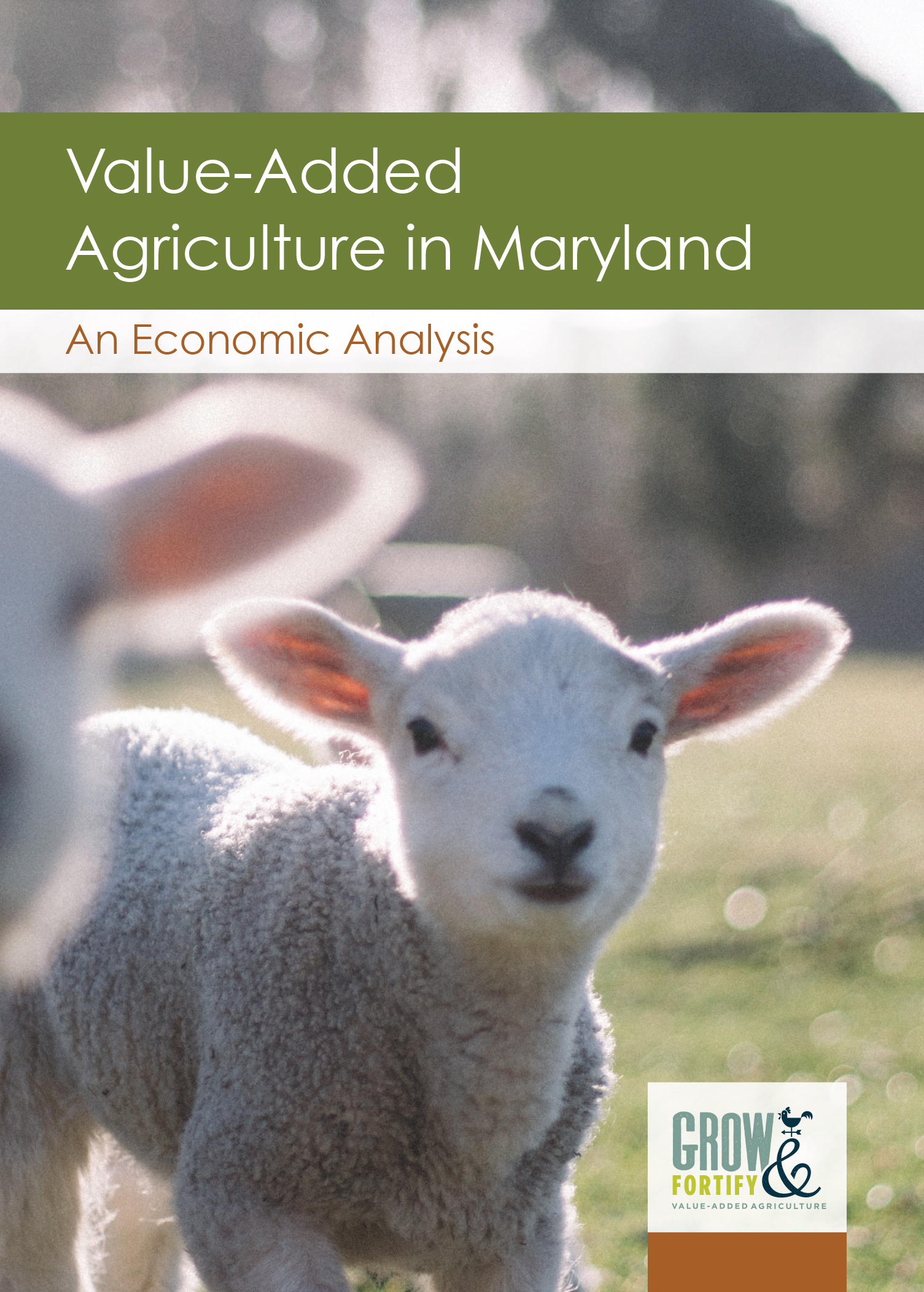 Grow & Fortify Releases Maryland Value-Added Agriculture Economic Analysis